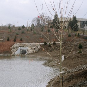 UTM Stormwater Management Pond